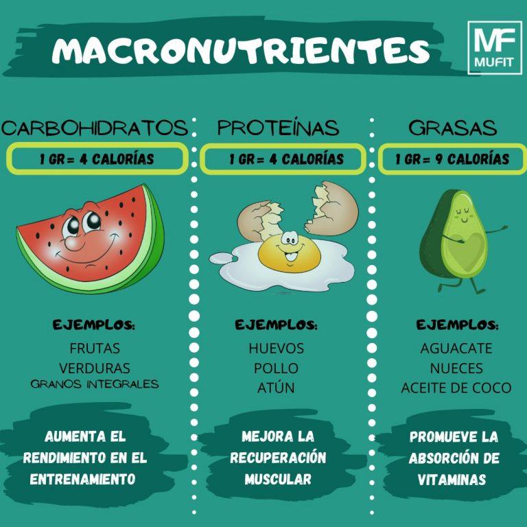 Macronutrientes: Que son y que funciones tienen en nuestro cuerpo